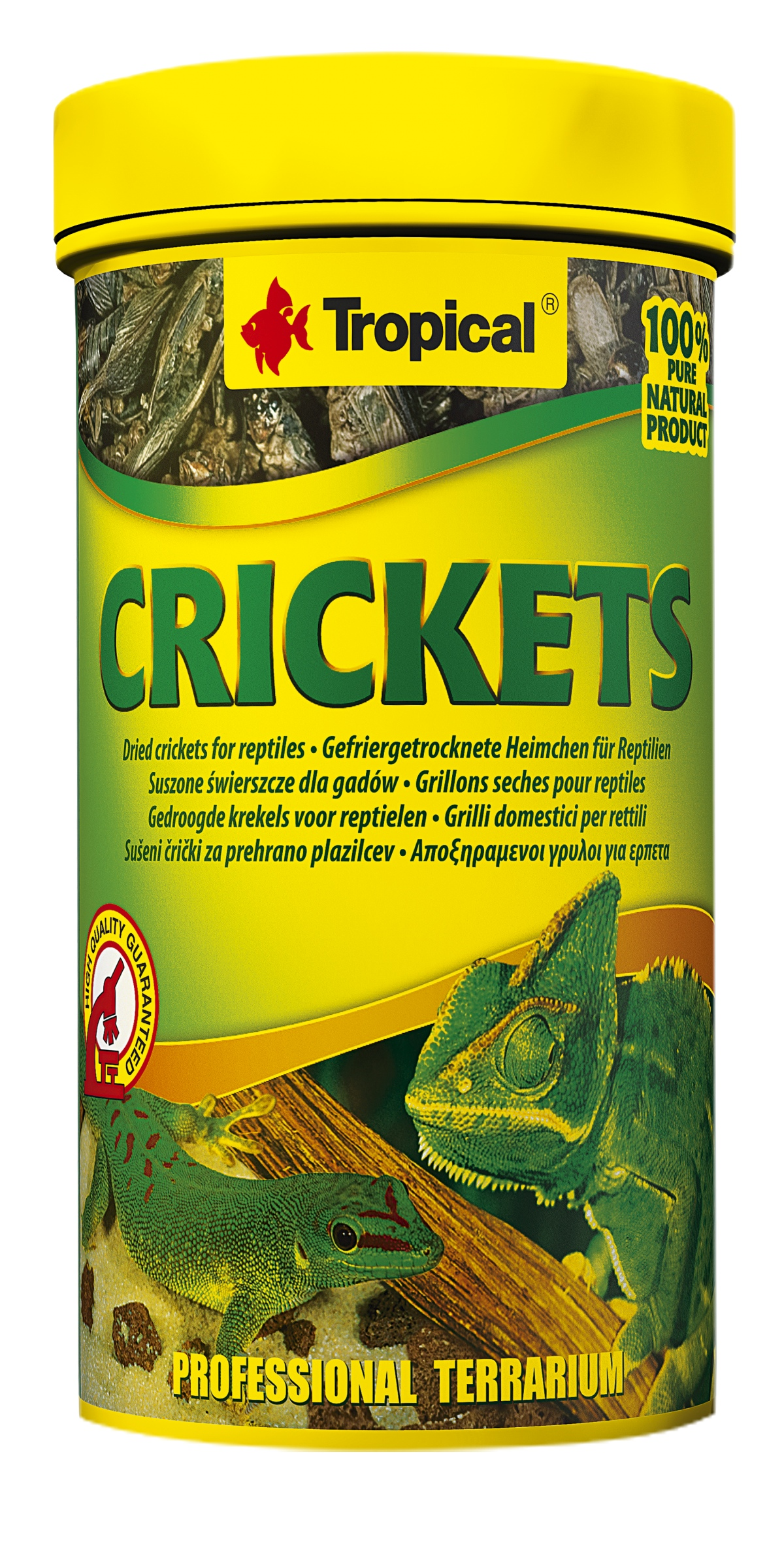 Tropical Crickets - 100ml/10g