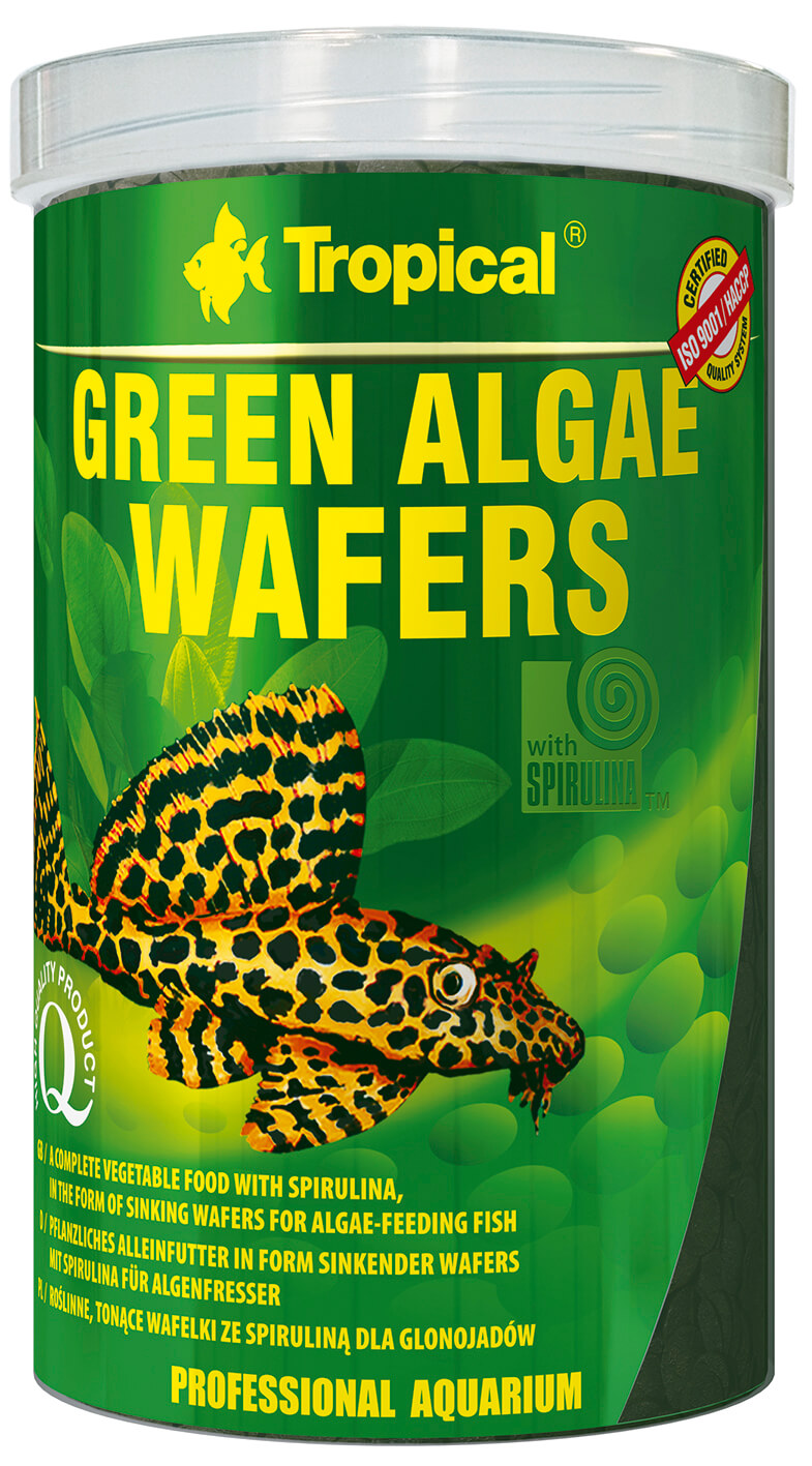 Tropical Green Algae Wafers - 1000ml/450g